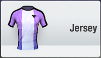 Club shop, jerseys, emblems and more-sponsorkit1.png
