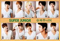 Lets Celebrate!-super-junior%5B-6229%5D.jpg