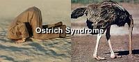 [Official] Challenge #3 - All Out Attack Challenge-ostrich-syndrome.jpg